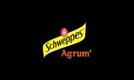 Schweppes Agrum (33 cl)